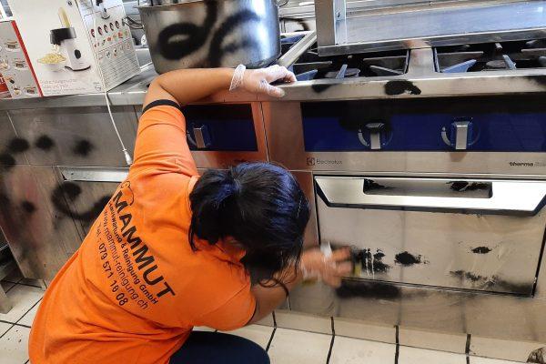 Putzfachfrau Mitarbeiterin