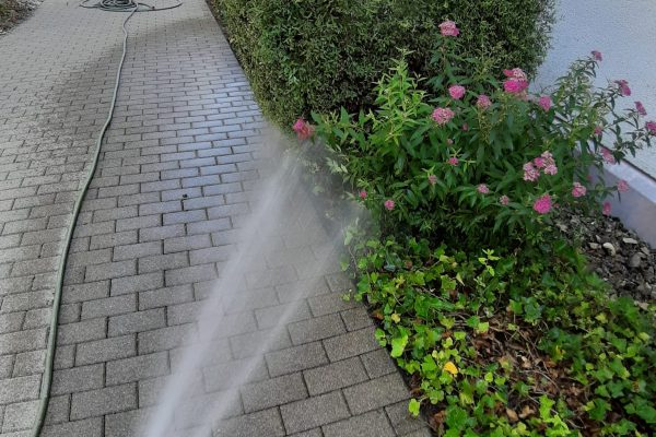Bewässerung im Sommer