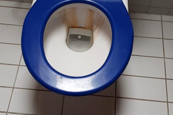 WC- Reinigung